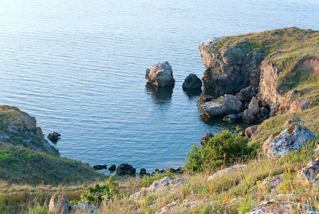 小さな岩の海のラグーンと沿岸の草と花 Premium写真