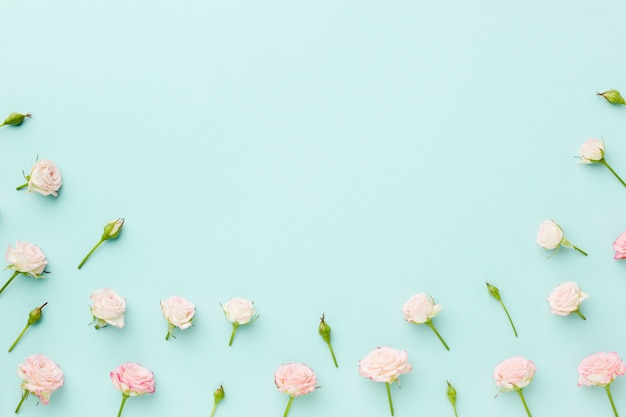 Small roses on blue background with copy space