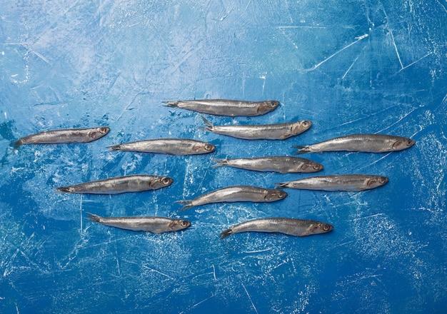 Small sea fishes