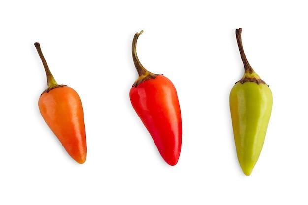 小さな種類の唐辛子ハバネロまたはハラペーニョが分離されました。理想的な辛い野菜のクローズアップ画像。健康的な自然有機食品