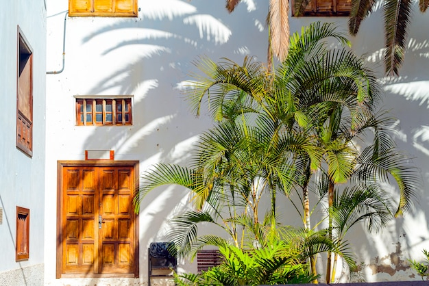 ヤシの木と枝のある小さなスペインのパティオ。古い木製のドアとガラチコ、テネリフェ島、スペインの窓