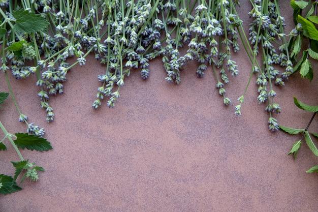 돌 배경 평면보기에 작은 향신료 허브 정원
