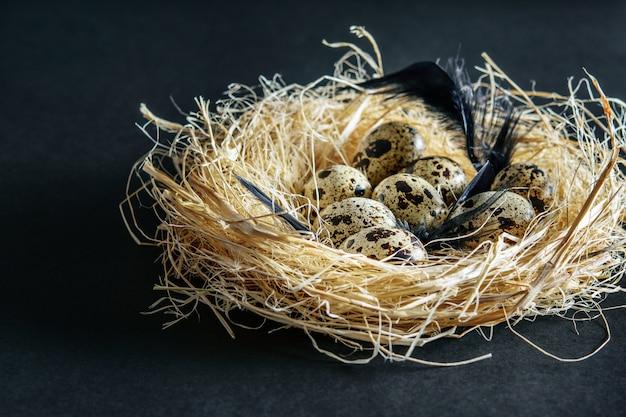 건초 둥지에서 작은 발견 메 추 라 기 계란