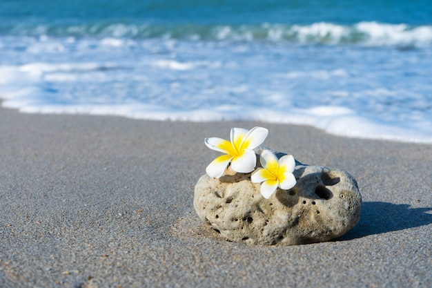 A small stone of an interesting smooth form is washed by waves on the beach. calm and relaxation by the sea concept