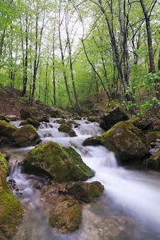 滝と苔むした石が周りに流れる小さな小川