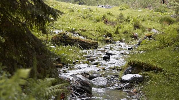 Небольшой ручей воды близко