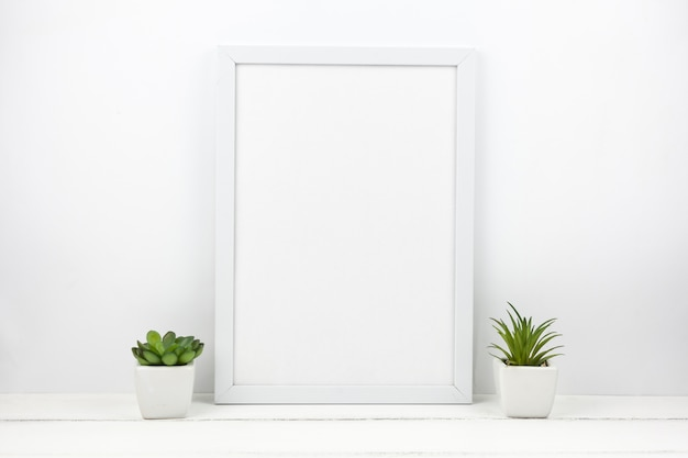 Small succulent plant and empty frame at home