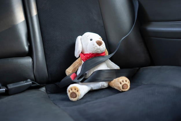 A small teddy bear protected with safety belt in car, vehicle accident security