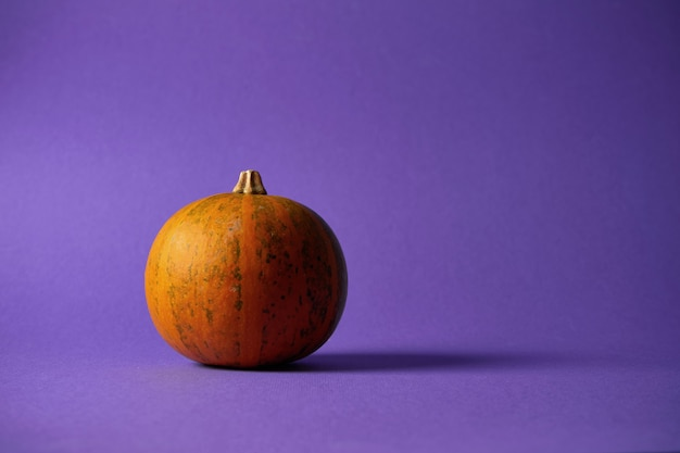 Small textured pumpkin on a purple wall. halloween decoration.