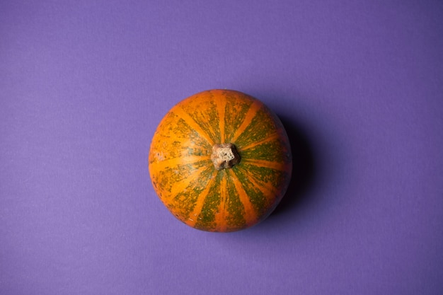 Small textured top view pumpkin on a purple wall. halloween decoration.