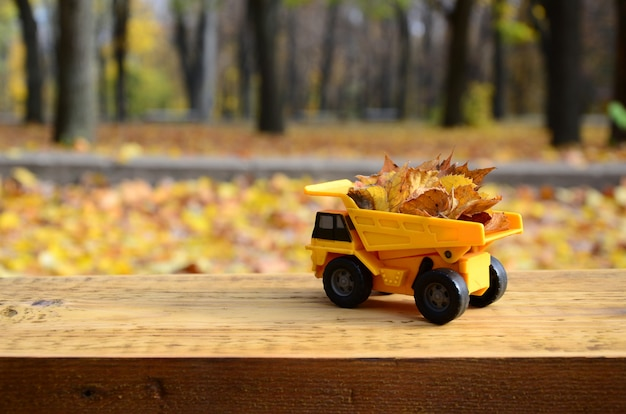 A small toy yellow truck is loaded with yellow fallen leavessonal works