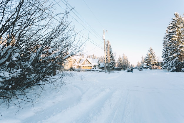 Small village in winter
