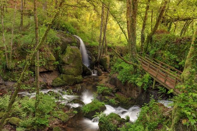 스페인 갈리시아 지역의 아렌테이로 강에 형성된 작은 폭포.