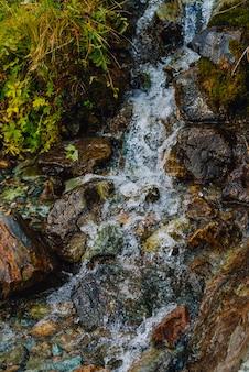 岩のクローズアップから小さな滝。山腹の湧水。緑の葉、植物。高地の豊かな植物。カラフルな石、美しい植物。