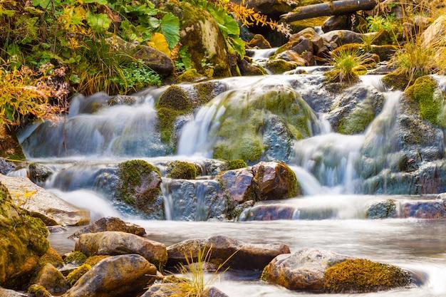 美しい滑らかな水と公園の小さな滝。絹のような泡立つ水と山の森の小さな滝。