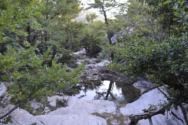 돌 여름 휴가에 돌 호수에 작은 폭포
