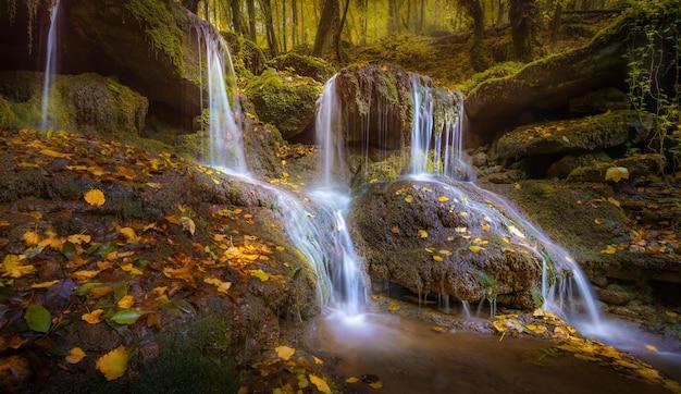 秋の落ち葉のある岩の上の小さな滝