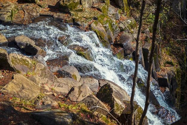 Каскад небольших водопадов в осенний сезон цвета в лесу недалеко от владивостока, россия