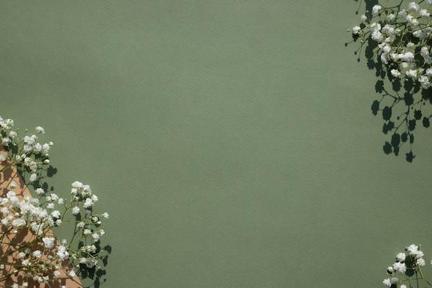 パステルグリーンの背景に小さな白い花とハードライトの影。幸せな女性の日、結婚式、母の日、イースター、バレンタインデー、エコとグリーンプラネットのコンセプト。フラットレイ、上面図