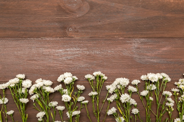 Small white flowers on wooden background