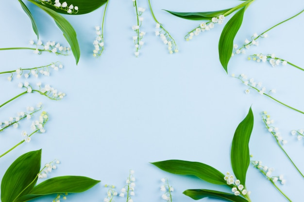 Маленькие белые ландыши с большими зелеными листьями