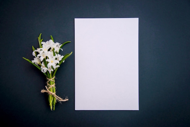 Маленькие белые весенние цветы хионодокса и лист бумаги на темно-зеленом