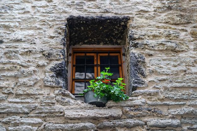 식물이 있는 냄비가 있는 오래된 석조 건물의 작은 창.