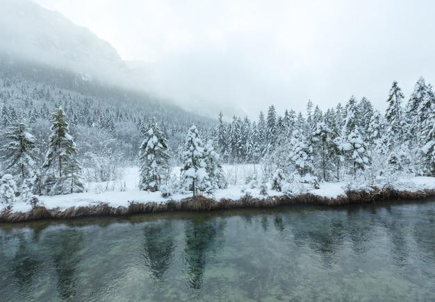 Небольшой зимний ручей с заснеженными деревьями на берегу.