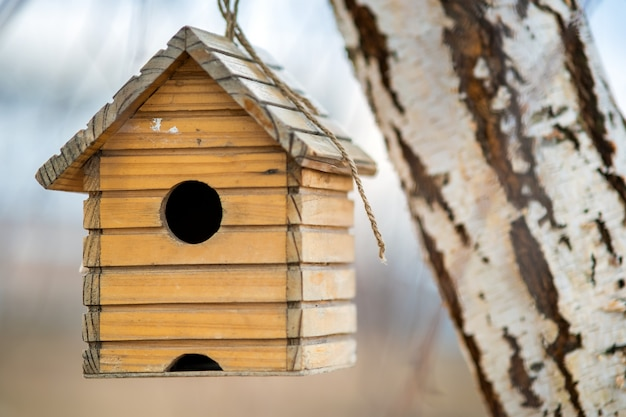 Small wooden bird house hanging on a tree branch outdoors.
