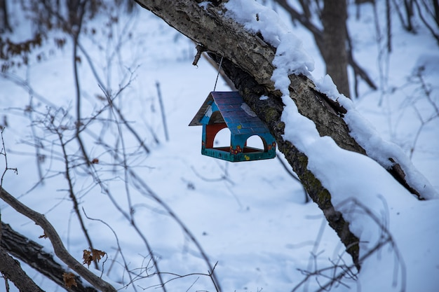 Small wooden birdhouse on the tree in the forest