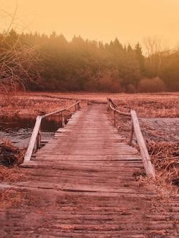 Небольшой деревянный мост в осеннем осеннем лесу