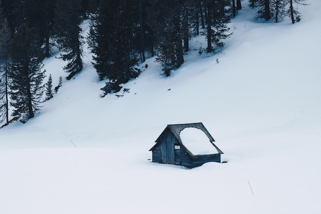 Small wooden handbuilt house in a forest covered in snow on a snowy hill