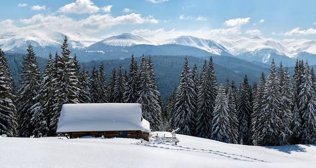 Небольшой деревянный дом, покрытый свежевыпавшим снегом, в окружении высоких сосен в зимних горах.