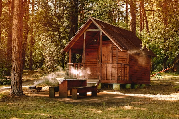 Small wooden house in a pine forest for recreation, camping in the forest, barbecue in nature
