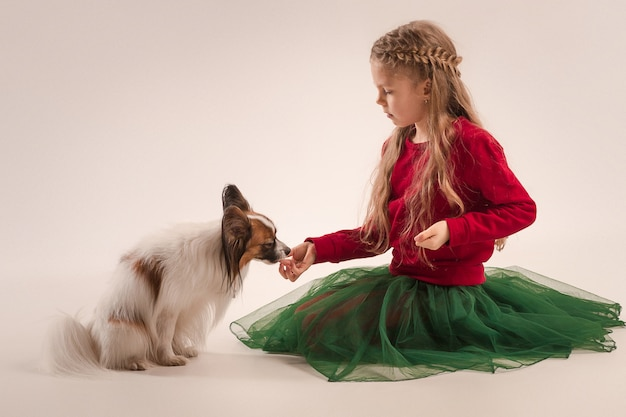 Маленький зевая щенок папийона