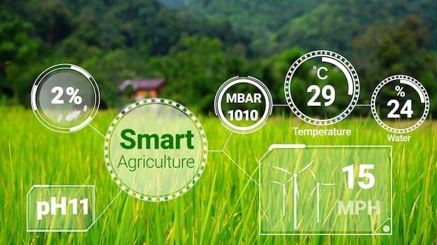 Умный цифровой сбор данных по сельскому хозяйству
