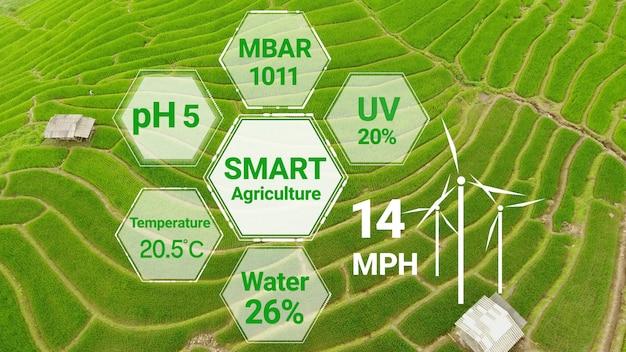 미래 센서 데이터 수집을 통한 스마트 디지털 농업 기술