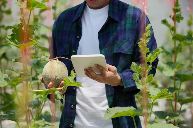Умная ферма, фермер с помощью планшетного компьютера управляет сельскохозяйственной системой в теплице