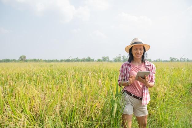 農業における最新技術を使用したスマート農業。アプリとインターネットを使用して水田でデジタルタブレットコンピューターを使用しているアジアの若い女性農学者の農民、農民は彼女の米の世話をします。