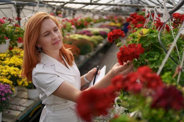 스마트 온실 제어. 여성 근로자가 낮에 붉은 꽃과 메모 데이터를 검사합니다.