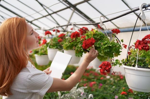 Controllo intelligente della serra. la lavoratrice ispeziona i fiori rossi e annota i dati alla luce del giorno