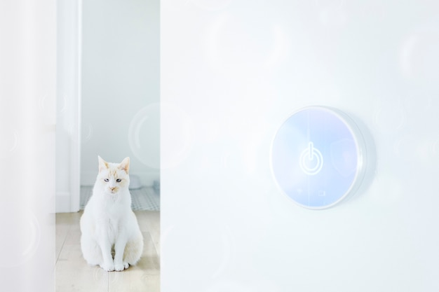 Smart pet and smart home technology background
