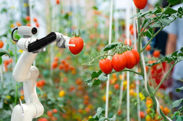 Smart robotic farmers in agriculture futuristic robot automation to work spray chemical