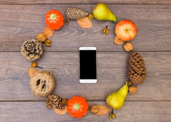 Smartphone in round frame of fruits