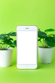 白い画面と緑の緑の植物とスマートフォンの携帯電話