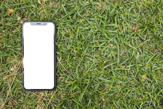 Smartphone with blank screen on grass