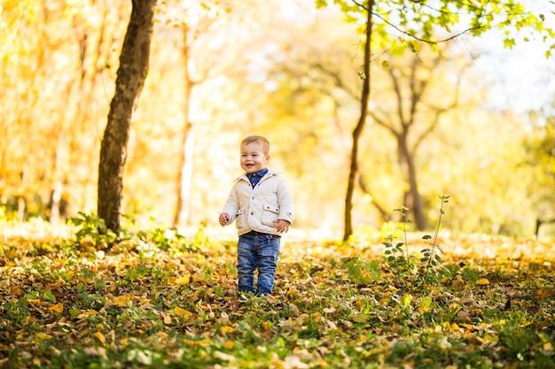 秋の森の木の近くに立っているかわいい男の子を笑顔します。秋の公園で遊んでいる少年。