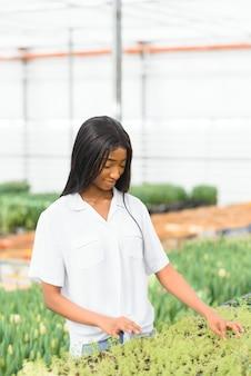 Улыбающаяся афро-американская девушка проверяет цветы в теплице с планшетом в руках