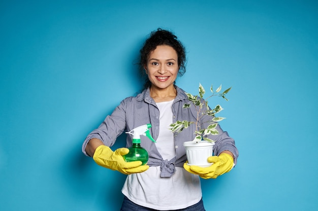 Smiling american woman in yellow gloves holding a pot with transplanted small tree and spray for indoor plants.