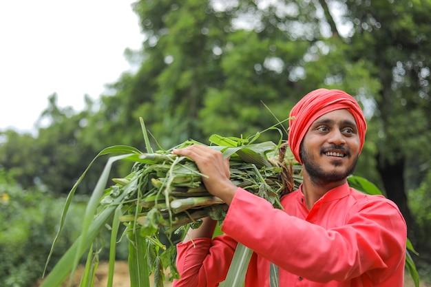 가축을 먹이기 위해 그의 어깨에 신선한 녹색 잔디를 들고 웃는 아시아 농부